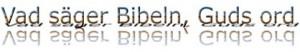 Namnlösvadsägerbibeln