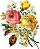 th_RosesDaisiesBouquet1