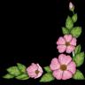 whitecornerflowergif.png